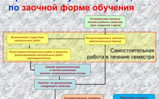 Что такое установочная сессия у заочников: особенности, сроки проведения и продолжительность