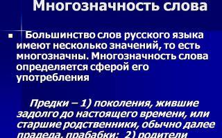Многозначность слова: примеры и употребление в русском языке